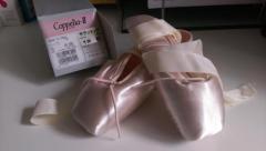 [新品] Chacott Cippelia-Ⅱ19cm D リボン付